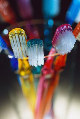 brush your teeth regularly to maintain cheap dentist fees